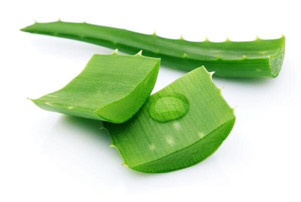 Bao cao su Okamoto 0.03 Aloe hương nha đam