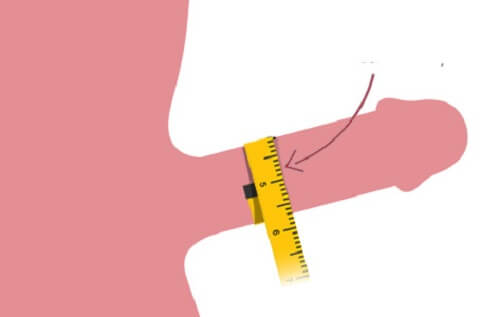 đo kích thước dương vât người việt nam